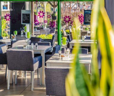 Restauracja Zielona zdrowa kuchnia Wrocław