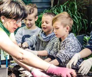 Akademia Małego Ogrodnika