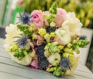 Zielone Centrum kwiaciarnia kwiaty